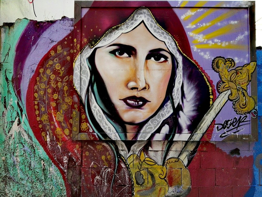 14 - Virgen del descampao