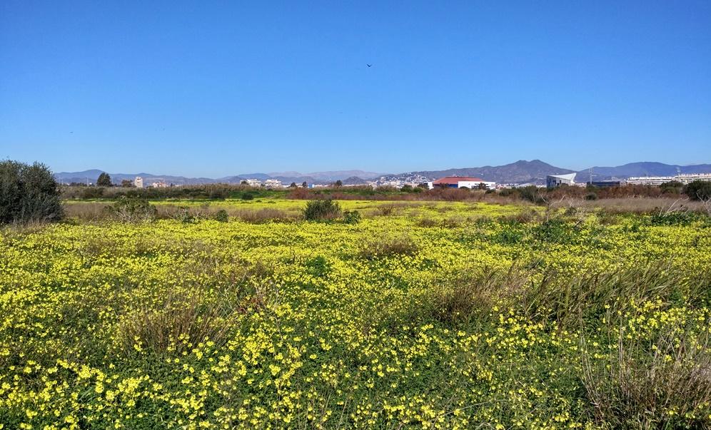 Paseando por el Gualdhorce Málaga