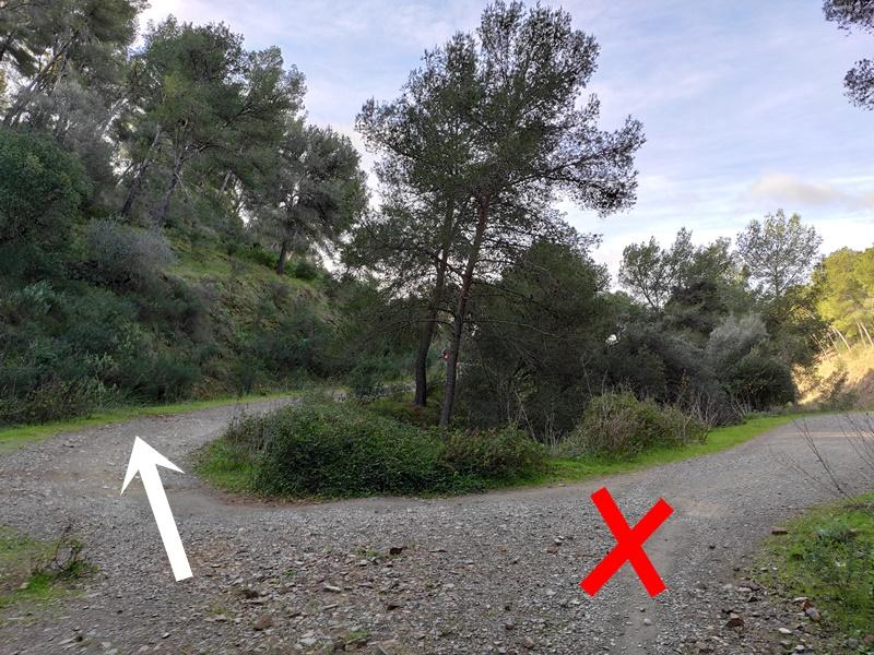 Cruce-Ruta-Montes-Malaga (2)