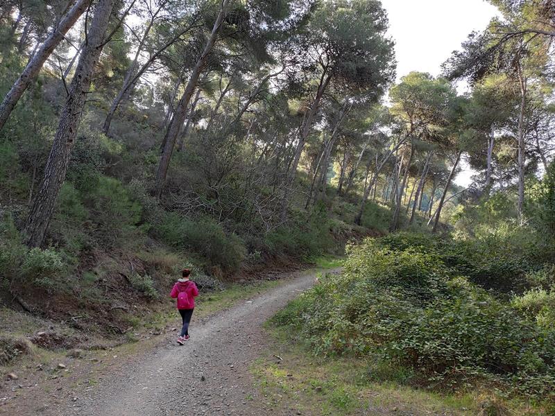 Sendero-circular-Montes-Malaga