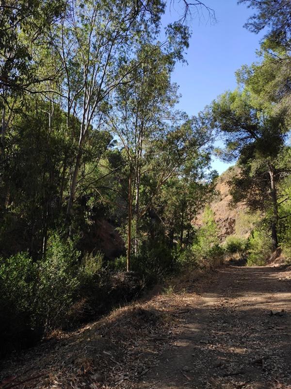 Inicio-Ruta-Circular-Acueducto-San-Telmo-Malaga