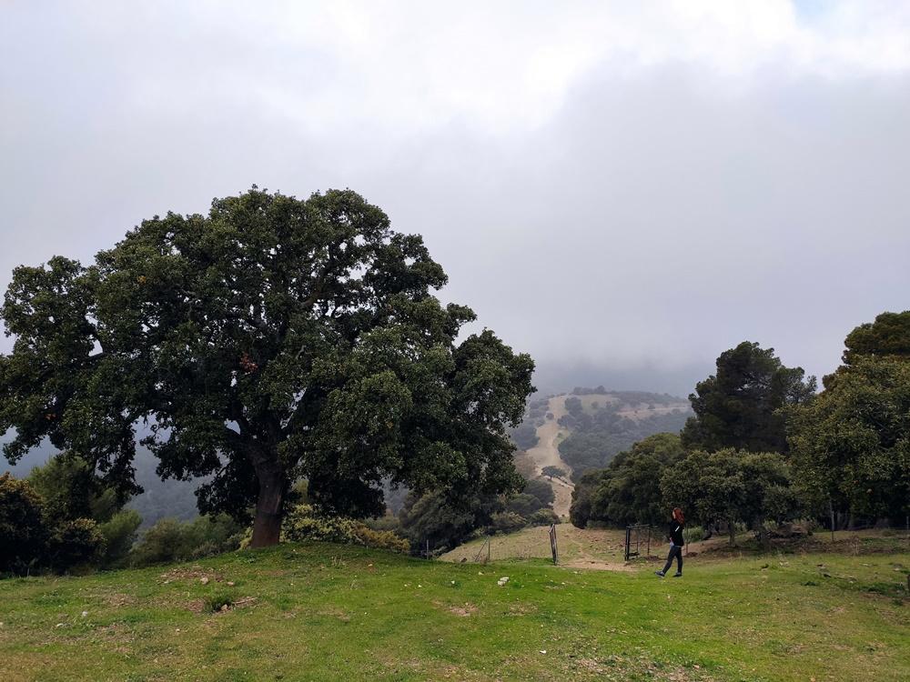 Mirador-Pocopan-Malaga