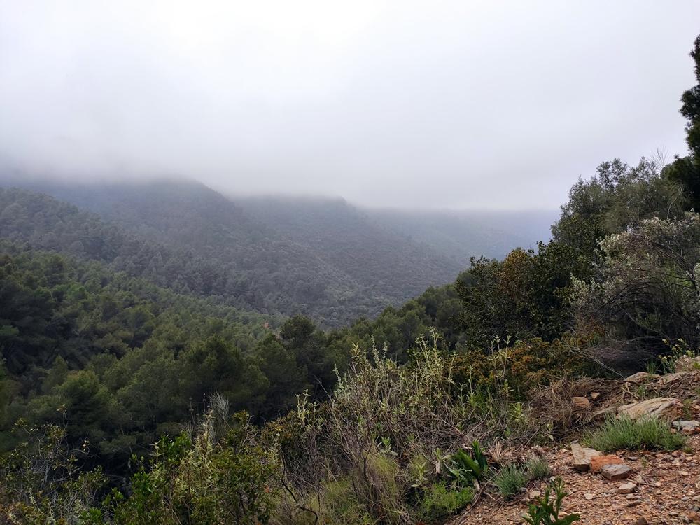 Paisaje-Pocopan-Sendero-Malaga