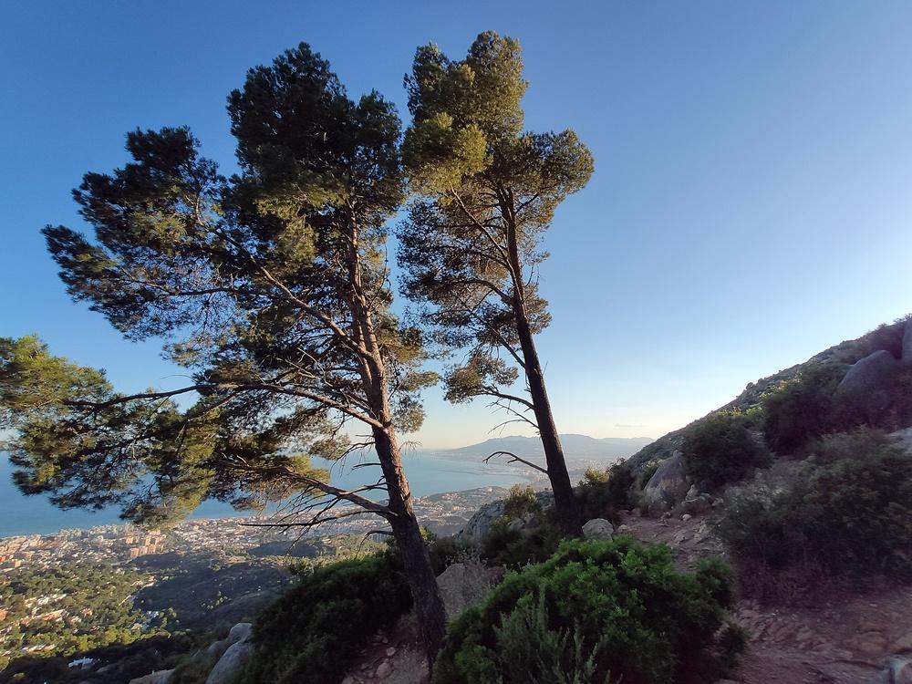 3Pinos-Monte-San Anton Malaga